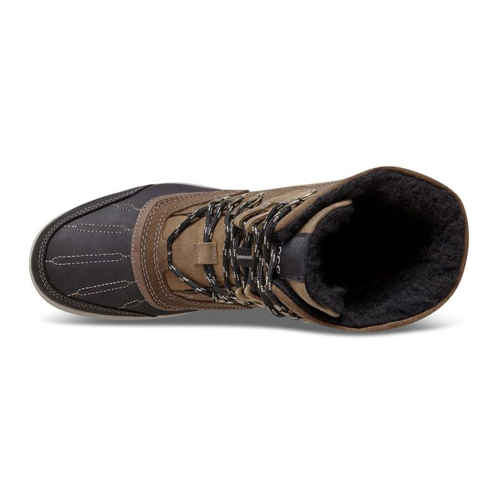Lowa Renegade GTX Mid Hiking Boot - Men's, Product Weight: lb w/ Free Shipping — models.