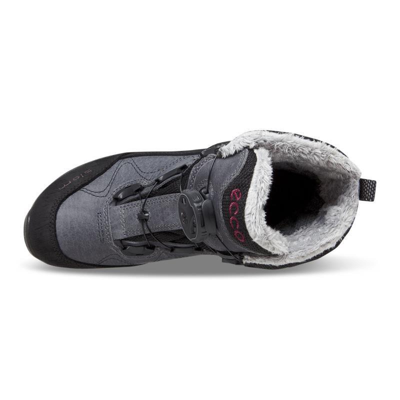 Ecco Boots Shoes Gtx Biom Women's Terrain Wmns Mid rz6Yrq