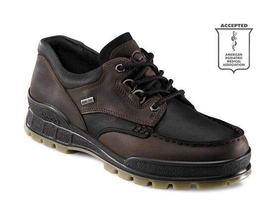 ECCO Track II GTX Low (BLACK/STONE)