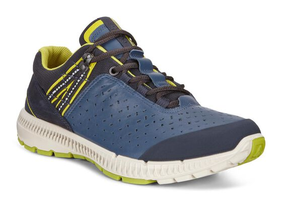 ECCO Mens Intrinsic TR Walk (MARINE/TRUE NAVY/NAVY/NAVY)