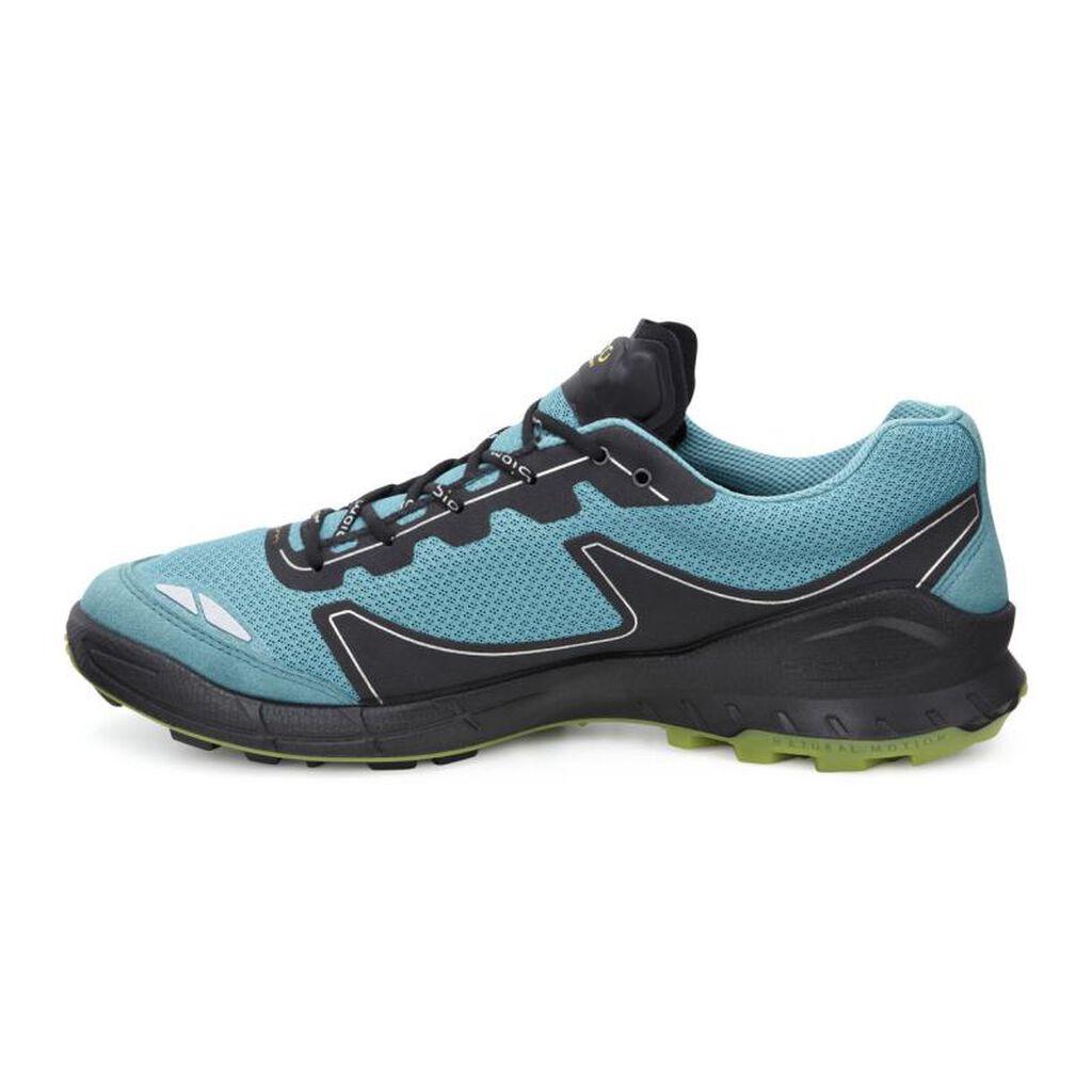 dc531ec5ccb1 ... ECCO Mens BIOM Trail FL GTXECCO Mens BIOM Trail FL GTX PAGODA  BLUE PAGODA BLUE ...