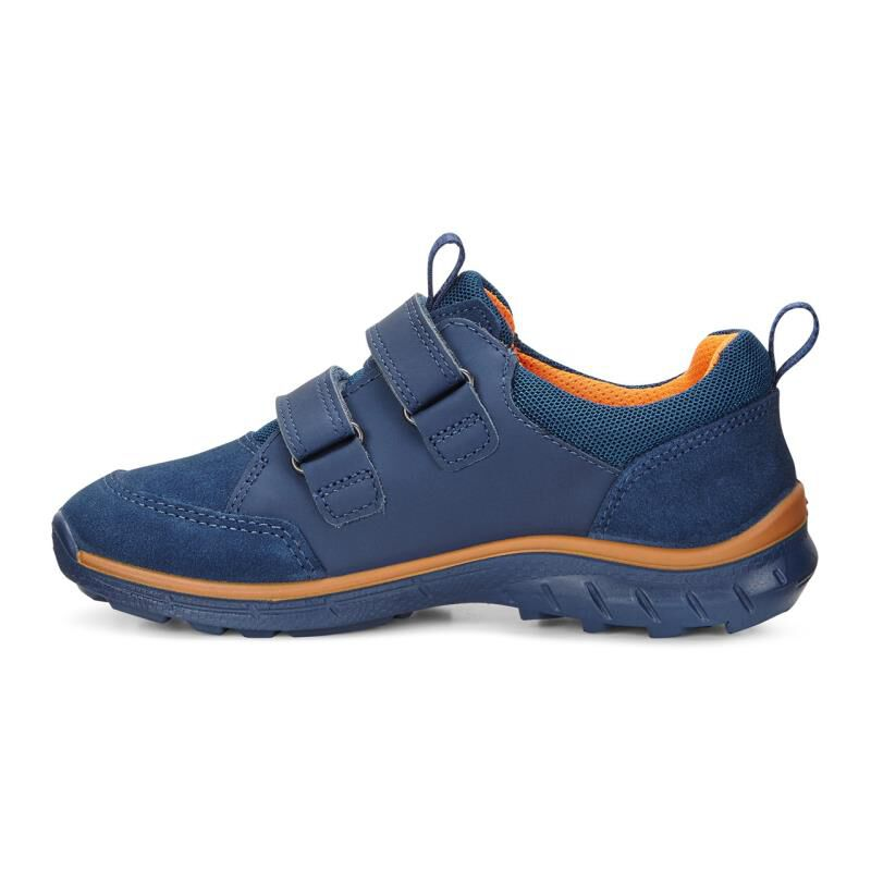 Canada Ecco Sport Shoes Biom Kid's Trail GtxKids yf7gbvIY6m