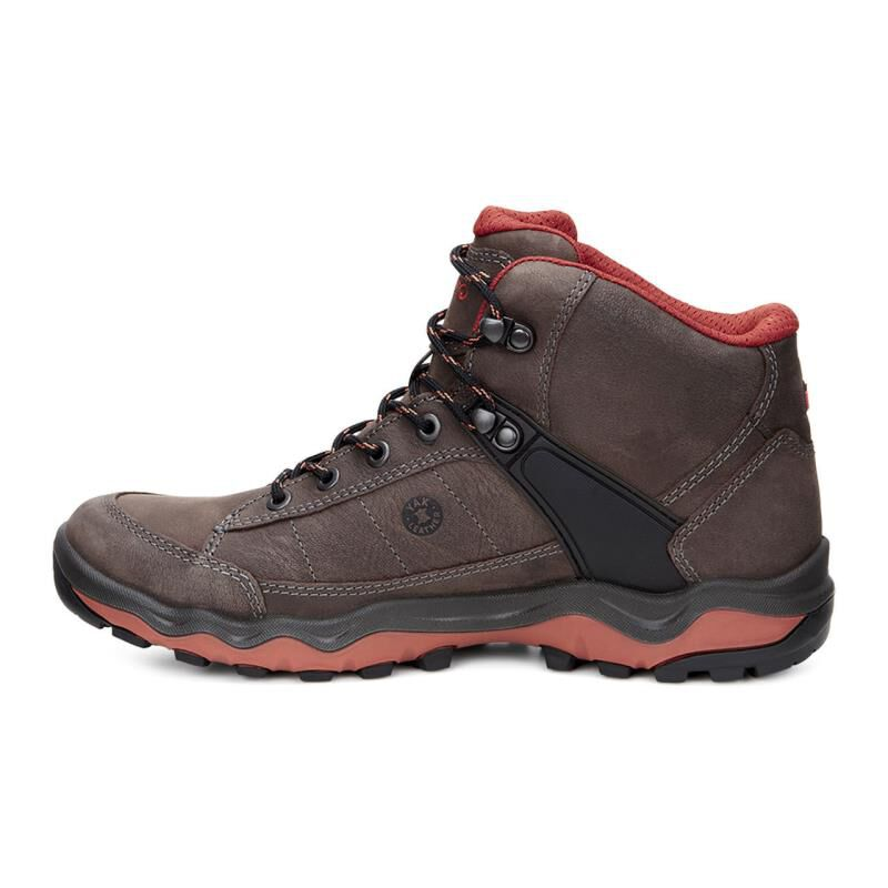 Discount Many Kinds Of Mens Ulterra Trekking and Hiking Boots Ecco Pre Order Cheap Price New Arrival Cheap Pick A Best Sast Cheap Price DRJY4Cu8LW