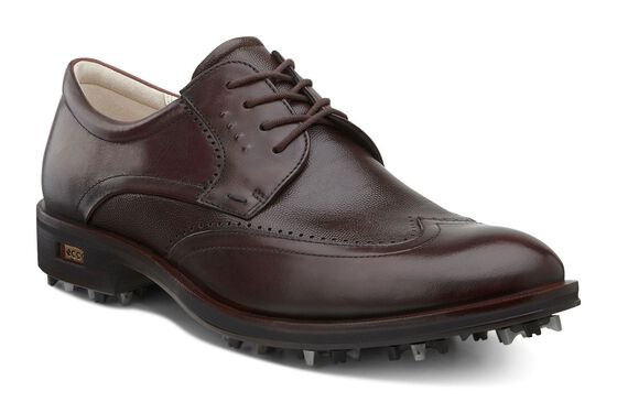 ECCO New World Class pour hommes (MINK/COCOA BROWN)